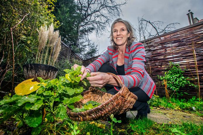 Irene Plugge plukt eeuwige moes uit haar tuin met permacultuur