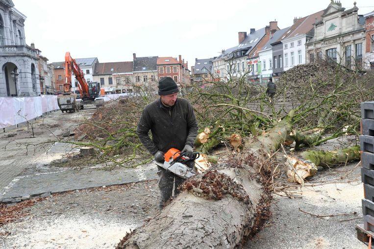De bomen worden gekapt en in stukken gezaagd op de Grote Markt.