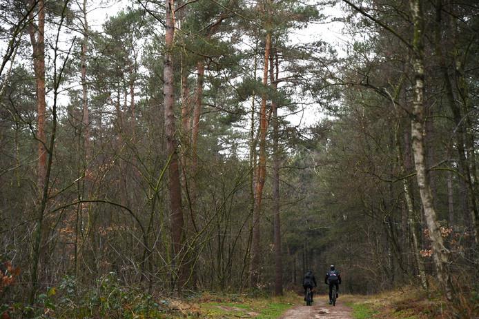 Mountainbikers op een van de paden door Landgoed Zoomland bij Bergen op Zoom.