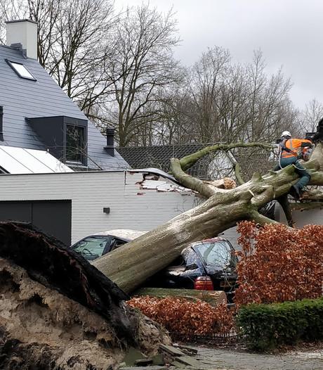 Storm houdt ook in Oisterwijk huis: van Kikkenduut tot Meubelfabriek