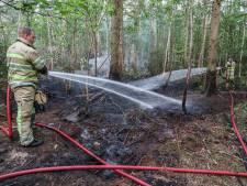 Opnieuw brand in Urkerbos: tweede keer in week tijd, brandstichting?