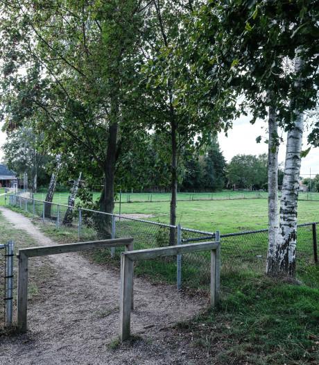 Kinderen dolblij: ze mogen weer voetballen op hun veldje in Halle