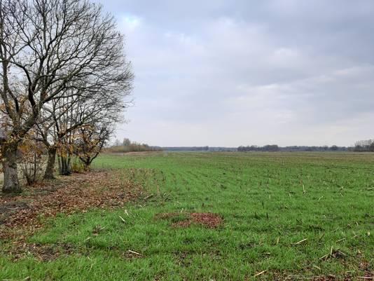 Het gebied waar Mierbeek-oost moet komen.