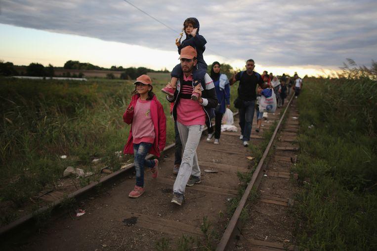 Migranten en vluchtelingen passeren de Servisch-Hongaarse grens. Beeld getty
