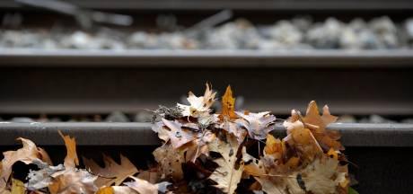 NS test in Brabant nieuw middel tegen gladheid op het spoor, moet ook geluidsoverlast verminderen