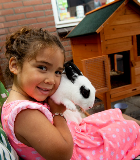 Verbrand konijn Anna van Samyra Konijnenberg uit Apeldoorn was al twee maanden spoorloos