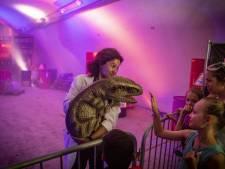 Dinopark Twente sluit deuren, maar niet voordat geheim van dokter Mirando wordt onthuld