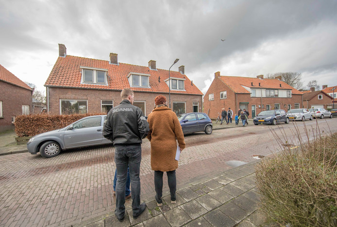 Woningen te koop in de Koningin Julianastraat in Hoedekenskerke.