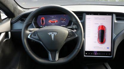 """""""Autopilot van Tesla herkent honden als voetgangers en wijkt uit voor eenden"""""""