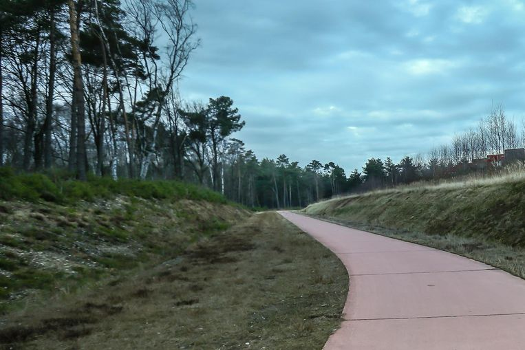 Voor het oorspronkelijke 'Essersbos' (foto) moest 12 hectare bos gekapt worden, maar dat leidde tot protest. H.Essers kocht vervolgens het voormalige Hörmann-terrein om er opnieuw activiteiten te ontwikkelen.