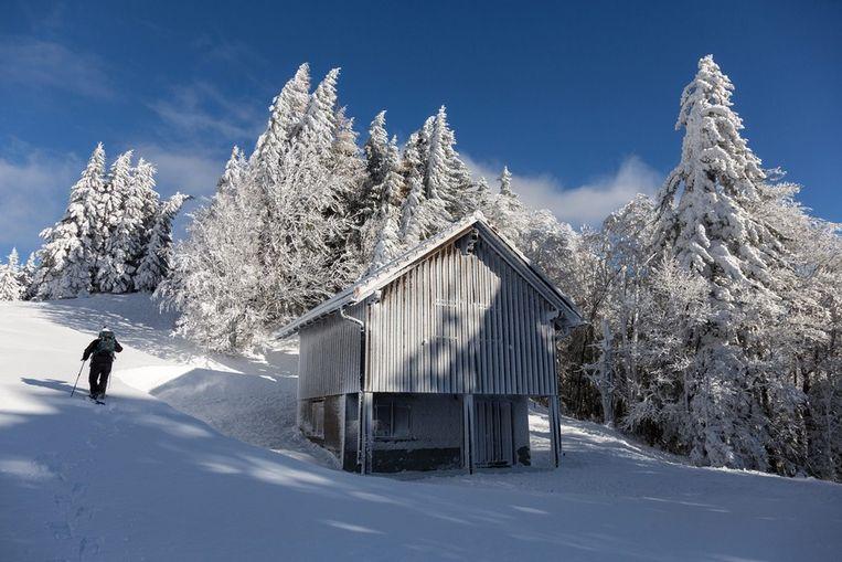 Mastrils, in het oosten van Zwitserland. Beeld epa