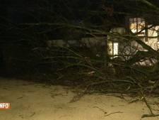 Trains perturbés, arbre sur une maison: le vent a fait des dégâts cette nuit