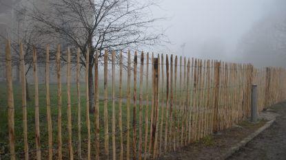 Kastanjehouten omheining rond kerktoren Abdijkerk moet beschermen tegen mogelijke brokstukken