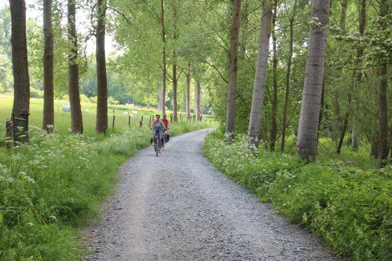 Het wandel- en fietspad in Den Dotter.