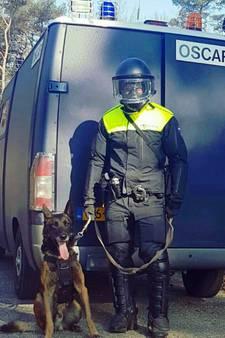 Politiehond Spike met schoentjes is geslaagd