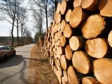'Kaalslag in Ravense Park is ons schrikbeeld'