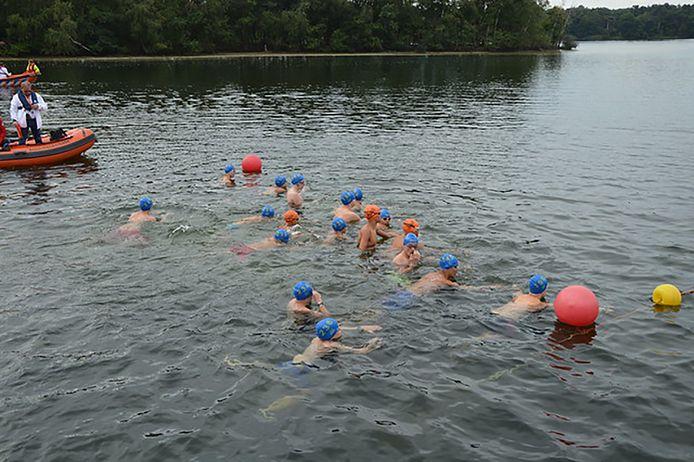 Een zwemwedstrijd bij De Dommelbaarzen in Vught.