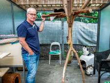 Muizen en achterstallig onderhoud jagen dierenasiel weg uit Rotterdam