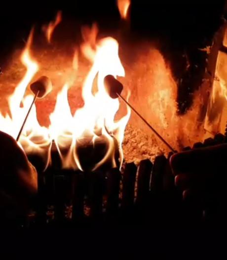 Pleidooi voor aanpak overlast door houtkachels in Goes