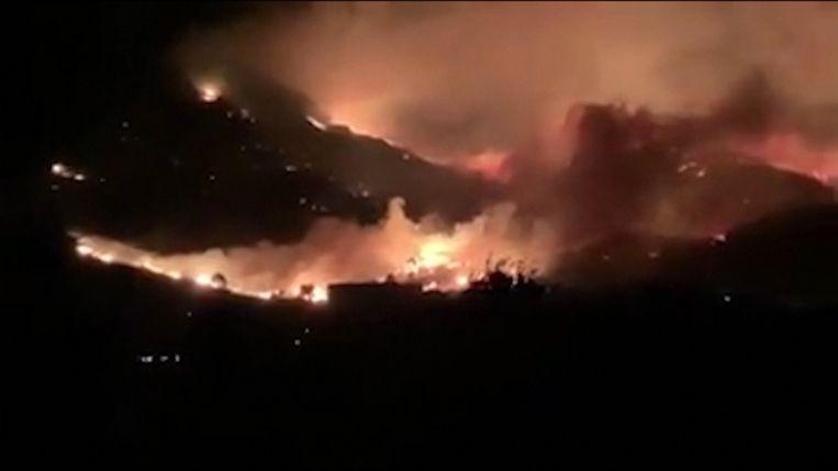 Bosbranden Corsica