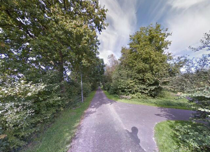De Wilgenweg bij Epe.