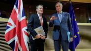 Britse brexitonderhandelaar in zelfisolatie