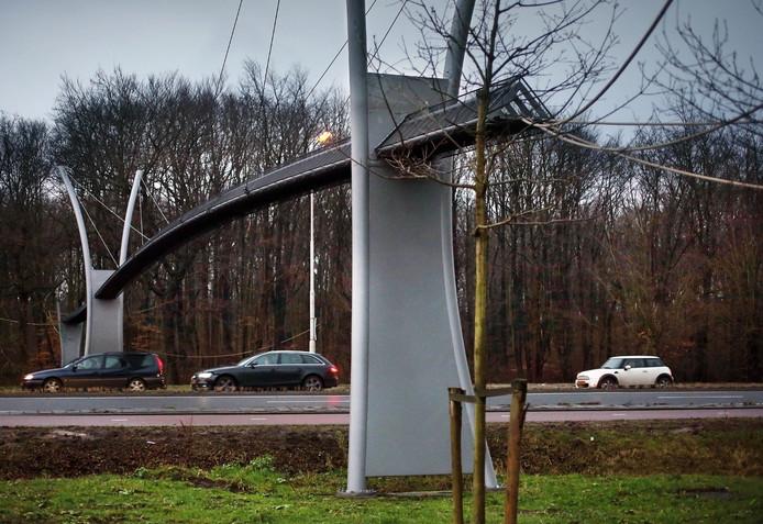 De eekhoornbrug over de Benoordenhoutseweg in Den Haag.