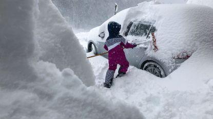 Vlamingen vast door sneeuwbom