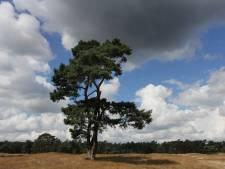 Utrechts Landschap heeft er 2000 'beschermers' bij