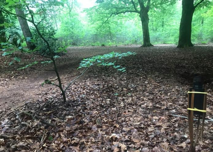 Een opgebrande fakkel, talloze peuken en bierdopjes: het zijn de restanten van een illegale houseparty die afgelopen weekend in de bossen nabij Nijmegen werd gehouden.