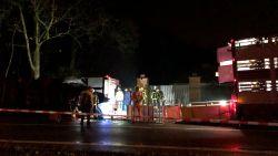 VIDEO. Vrachtwagen met biggen gekanteld op Essensteenweg