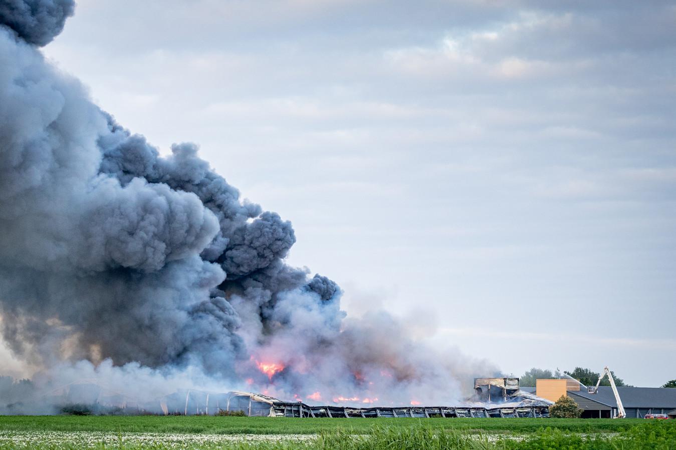 Bij de brand in Kiel-Windeweer kwamen ruim 100.000 kippen om het leven.