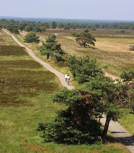 Het vele fietsen verandert mijn kijk op Arnhem. Als Katwijk aan Zee ligt, ligt Arnhem aan Bos