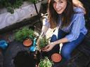Vous avez un petit jardin ou seulement une terrasse ou un balcon ? Vous pouvez cultiver de la salade, des tomates cerises ou des aromates dans un pot pour aromates ou un carré de potager.