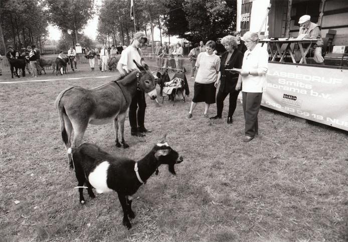 Ezeltjesdag Eeneind/Nuenen (1993).