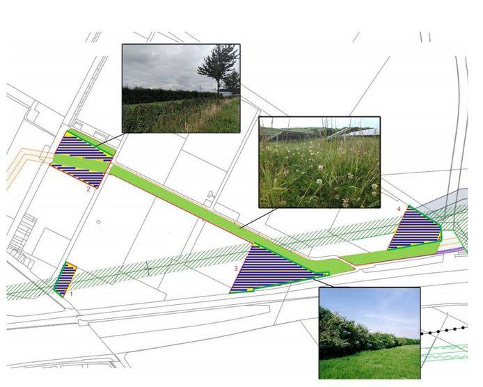 Landschappelijke inpassing van de vier zonnevelden in de Bathpolder bij Rilland. Op het grootste vlak onderaan de kaart was de mestvergister voorzien.