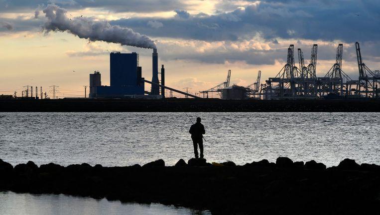 De steenkool-biomassa centrale van GDF SUEZ op de Maasvlakte. Beeld Peter Hilz / Hollandse Hoogte