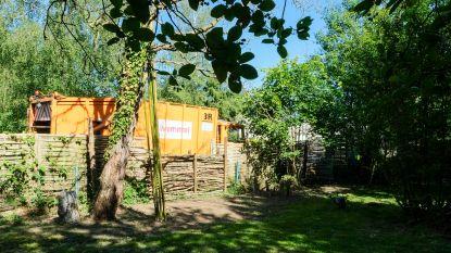 """Vuilniskarren staan jaar lang bijna in achtertuin en verontreinigd water dringt tuinen binnen: """"Onze sier- en fruitbomen zijn er aan"""""""