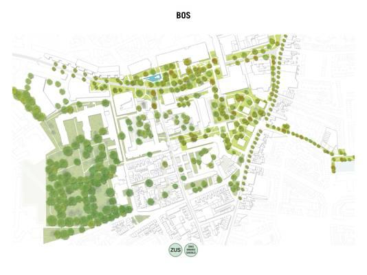 Nog zo'n extreme optie: een Koningsplein en Stadskwartier waar de bomen de baas zijn.