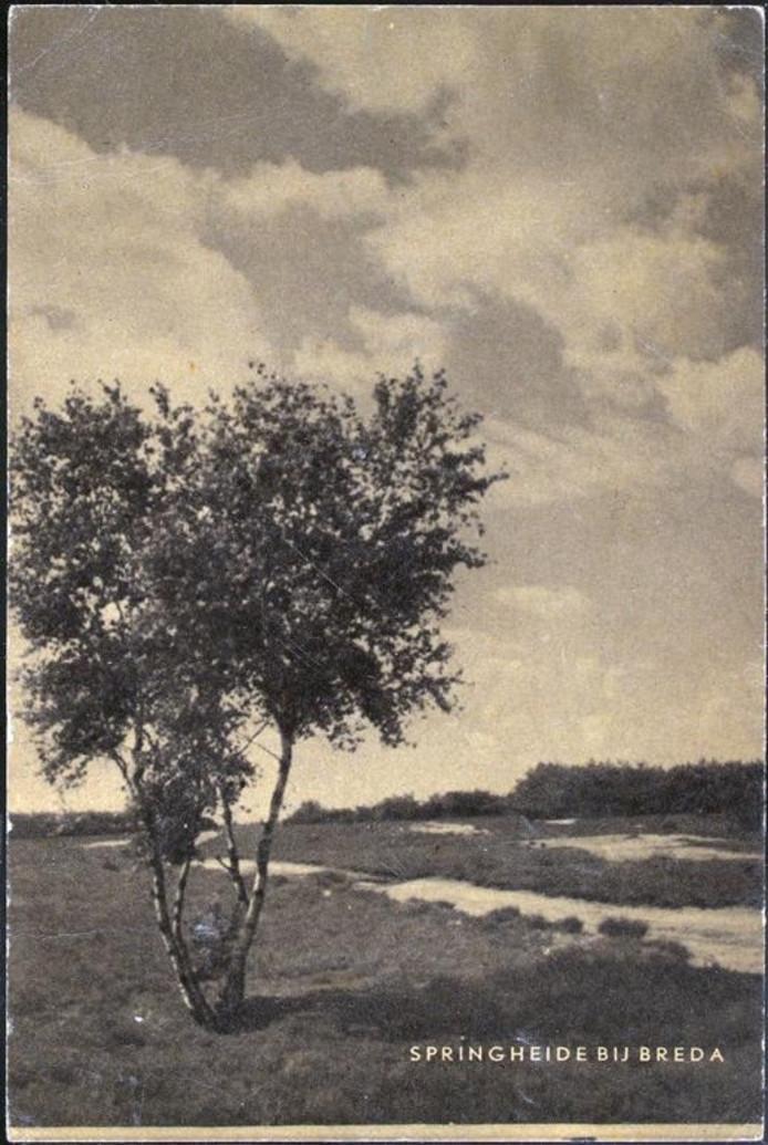 De Galderse Heide, beginaren 1940.