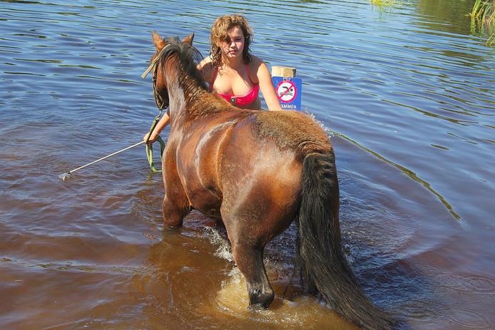 Verkoeling voor 'man' en paard (in spreekwoordelijke zin).
