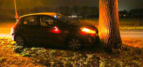 Automobilist botst tegen boom in Lierop