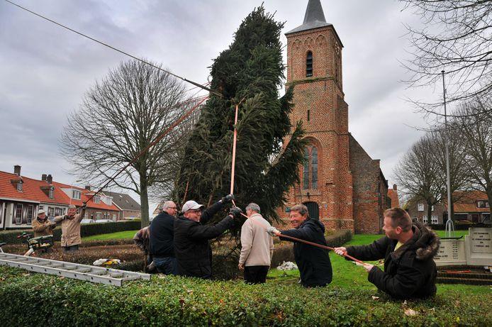 In Serooskerke wordt met vereende krachten de kerstboom overeind gezet in het hart van het dorp.