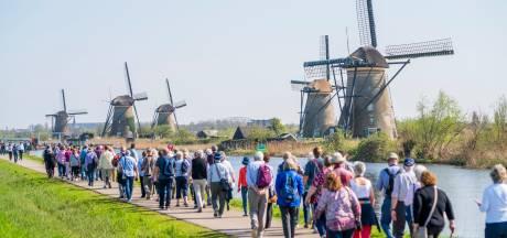 Op verkenningstocht langs traditionele molens? 'Vraag de molenaar of je even binnen mag kijken'
