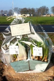 Zes maanden rijontzegging en taakstraf na dodelijk ongeval Daniëlle Maathuis uit Geesteren