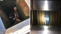 Man na twee dagen gered uit smal afvoerkanaal van Chinees restaurant in VS