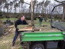 Duizenden euro's schade aan graven in Stratum door omgewaaide boom