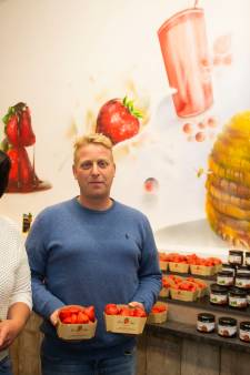 """Hoogstraatse aardbeienteler opent winkeltje in 't Stad: """"'s Morgens geplukt, rond 11 uur in de Kammenstraat"""""""