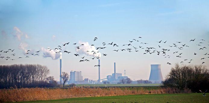 De uitstoot van broeikasgassen in de gemeente Geertruidenberg is opvallend hoog vergeleken met andere gemeenten in Noord-Brabant. De oorzaak is de CO2-uitstoot door de Amercentrale. Alleen in de gemeente Moerdijk is de uitstoot van broeikasgassen hoger.