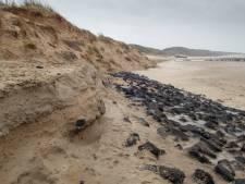 Waterschap slaat alarm: opspuiten kust kan niet langer wachten. 'Veiligheid komt in gevaar'